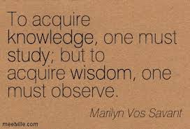 Wisdom is Learn from Observation